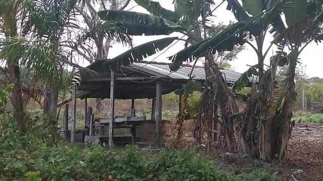 50 hectares a 25 km de castanhal por 250 mil zap * - Foto 12