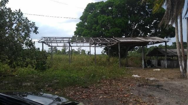 50 hectares a 25 km de castanhal por 250 mil zap * - Foto 16