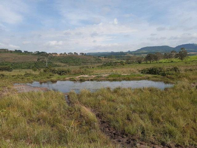 Sitio em monte santo de minas 13 alqueires 1.299.000.00 - Foto 3