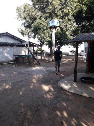 chácara no município de alvorada -to  - Foto 2