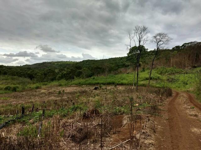 Fazenda para plantio - Foto 16