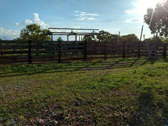 Fazenda para pecuária e plantio de soja em Natividade -TO 387 Hectares