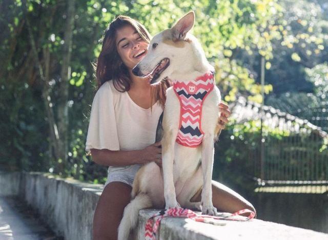 Peitoral Mesh Plus Zee Dog - Estampa Maui - Tamanho G - Foto 2