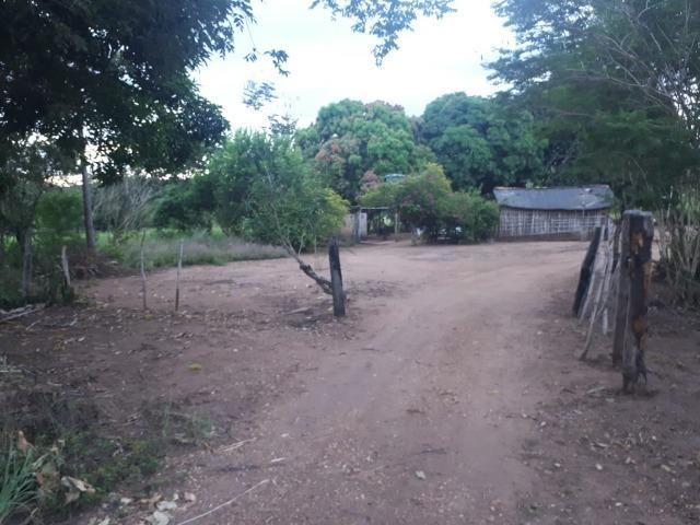 Sitio próximo do manso - Foto 12
