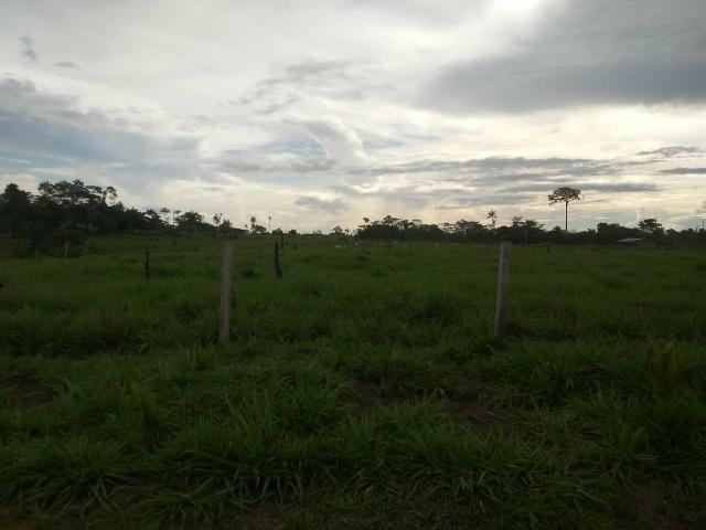 Vendesse um colônia estrada de porto acre ramal pira pora 28 km de ramal - Foto 6
