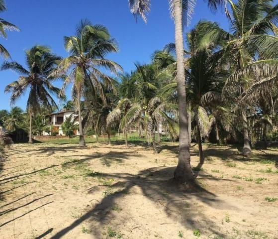 Casa à venda com 5 dormitórios em Flexeiras guajiru, Trairi cod:CA0027 - Foto 12