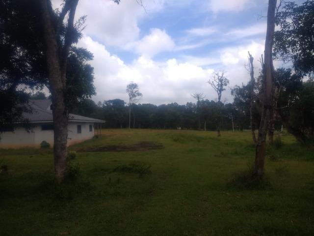 Fazenda em Tijucas do Sul -PR - Foto 12