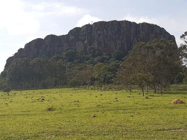 Sitio em monte santo de minas 13 alqueires 1.299.000.00 - Foto 5
