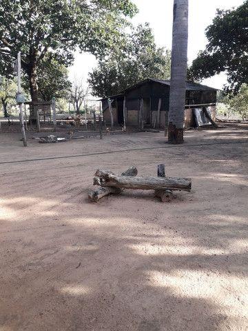 chácara no município de alvorada -to  - Foto 5