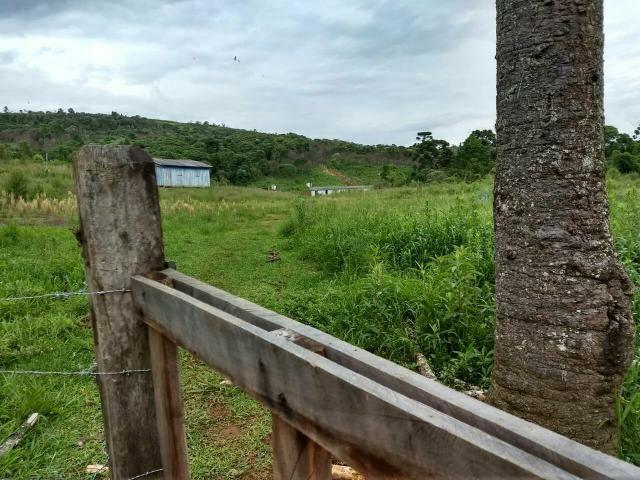 Fazenda para plantio - Foto 18