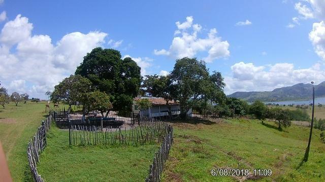 Vendo Fazenda na Cidade de Bonito - Pe com 72 hect. / represa do prata - Foto 9