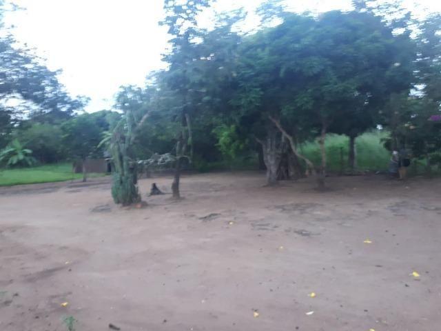 Sitio próximo do manso - Foto 13