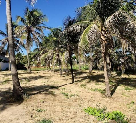 Casa à venda com 5 dormitórios em Flexeiras guajiru, Trairi cod:CA0027 - Foto 11