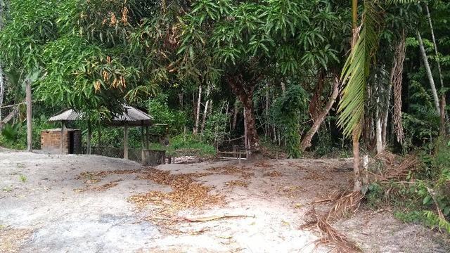 50 hectares a 25 km de castanhal por 250 mil zap * - Foto 11