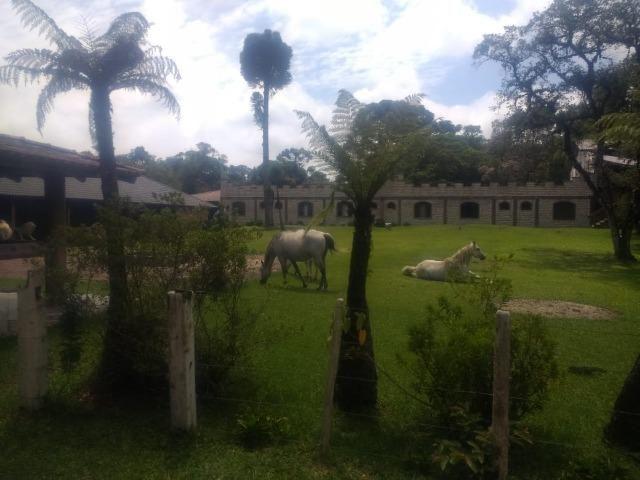 Fazenda em Tijucas do Sul -PR - Foto 4