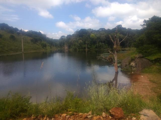 Fazenda em Tijucas do Sul -PR - Foto 15