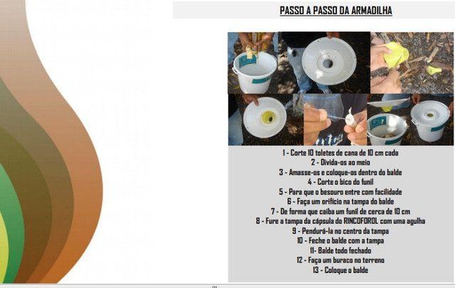 Feromônio Da Broca Do Olho Do Coqueiro Atrativo Promoção! - Foto 3