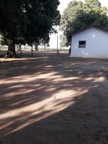 chácara no município de alvorada -to  - Foto 3
