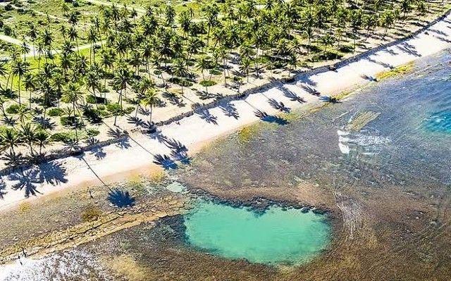 Condomínio Praia das Jangadas - Praia do Forte - Terrenos de 630 m² e 800 m² - Beira Mar - - Foto 9