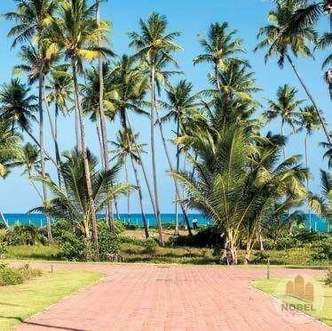 Condomínio Praia das Jangadas - Praia do Forte - Terrenos de 630 m² e 800 m² - Beira Mar - - Foto 6
