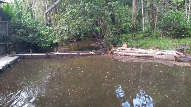 50 hectares a 25 km de castanhal por 250 mil zap * - Foto 4