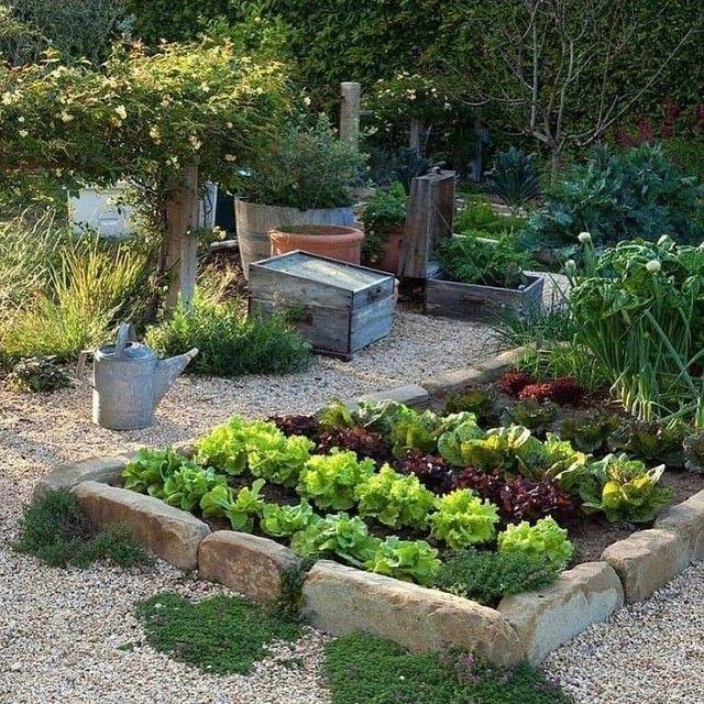 Jardineiro, Corte de Grama, Horta Orgânica - Foto 3