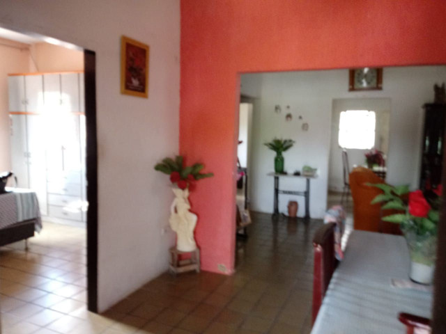 Linda casa , Casa em Cruz de Rebouças, nas proximidades  da Br - Foto 5