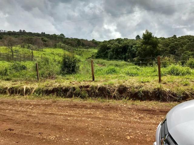Fazenda para plantio - Foto 2