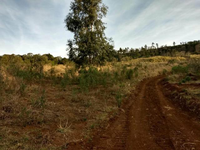 Fazenda para plantio - Foto 13