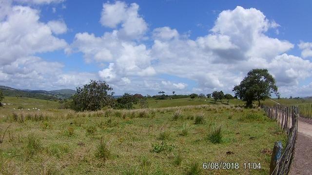 Vendo Fazenda na Cidade de Bonito - Pe com 72 hect. / represa do prata - Foto 13