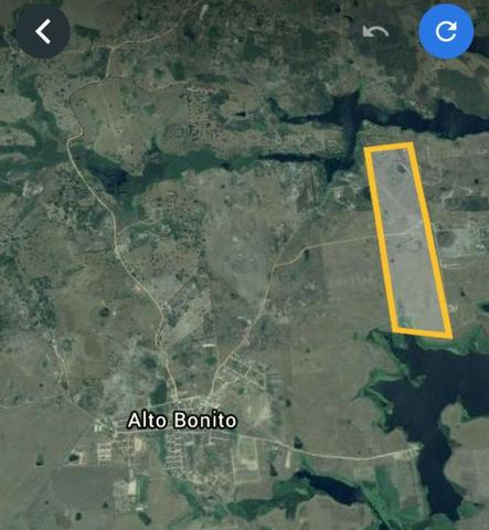 Vendo Fazenda na Cidade de Bonito - Pe com 72 hect. / represa do prata - Foto 14