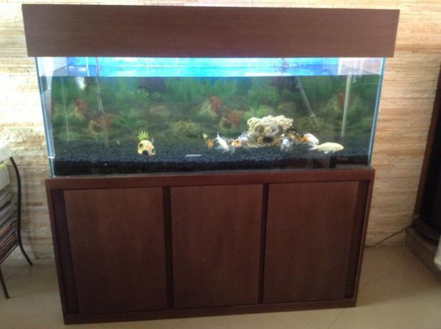 Vendo ou Troco Aquário Completo 450 litros. não tenho espaço para o aquário. - Foto 4