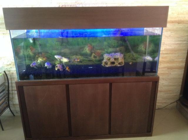 Vendo ou Troco Aquário Completo 450 litros. não tenho espaço para o aquário. - Foto 2