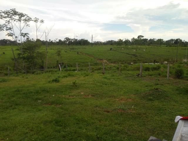 Vendesse um colônia estrada de porto acre ramal pira pora 28 km de ramal - Foto 3