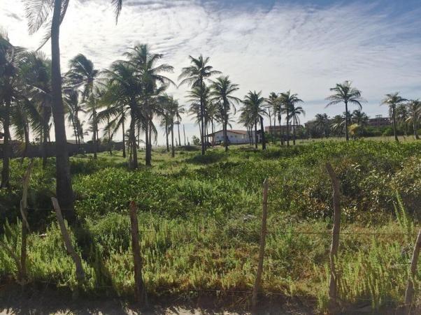 Casa à venda com 5 dormitórios em Flexeiras guajiru, Trairi cod:CA0027 - Foto 10
