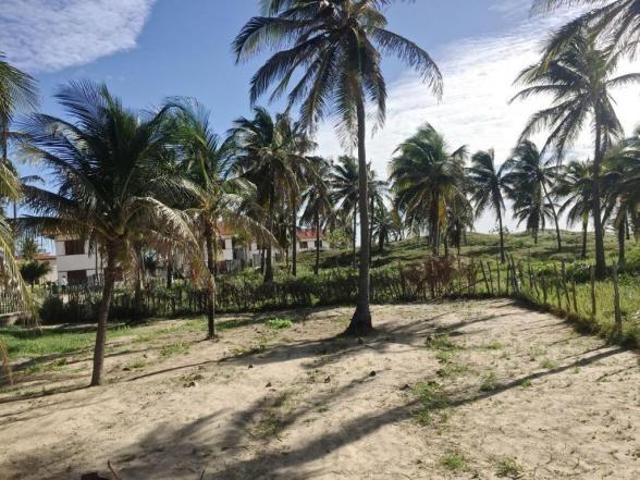 Casa à venda com 5 dormitórios em Flexeiras guajiru, Trairi cod:CA0027 - Foto 9