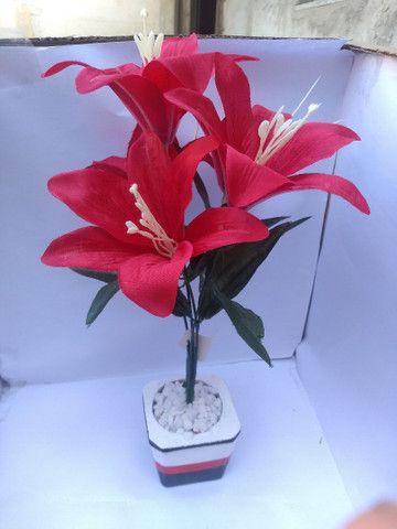 Planta Vermelha Lírio ( Para Decoração ) - Foto 5