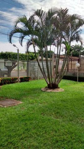Apartamento na Vila Bandeirantes - Foto 13