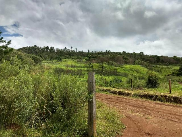 Fazenda para plantio - Foto 17