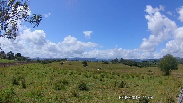 Vendo Fazenda na Cidade de Bonito - Pe com 72 hect. / represa do prata - Foto 10