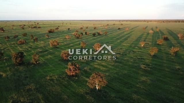 Área rural 47.000 ha - Dupla Aptidão - Foto 7