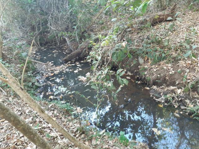 Urgente Vendo Meio Alqueire Prox a Teresópolis e Goianápolis Nerópolis Urgente Muita Água - Foto 6