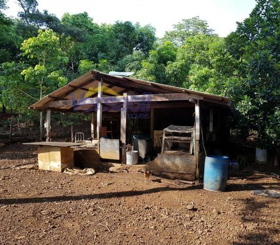 Chácara a 28km sentido Palmas X Aparecida do Rio Negro, confira!!! - Foto 5