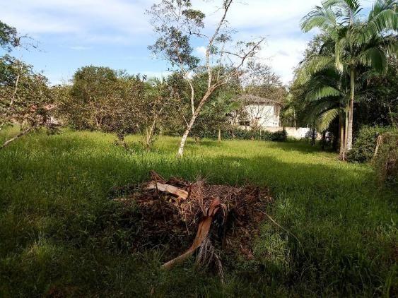 Chácara - Vila das Palmeiras - Morretes - Foto 12