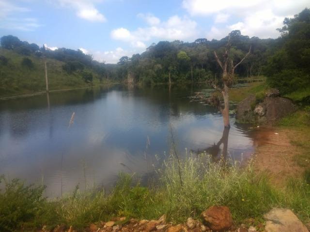 Fazenda em Tijucas do Sul -PR - Foto 5