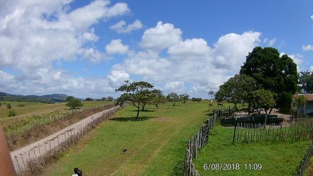 Vendo Fazenda na Cidade de Bonito - Pe com 72 hect. / represa do prata - Foto 8