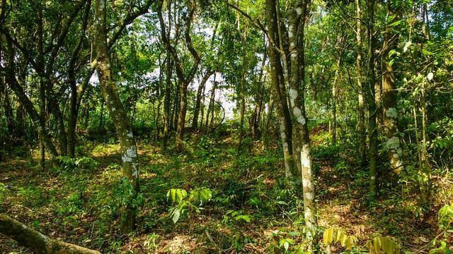Lote 393 m² Atibaia/SP Documento Ok. Cód. 017-ATI-003 - Foto 17