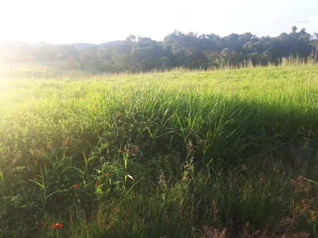 Sitio próximo do manso - Foto 2