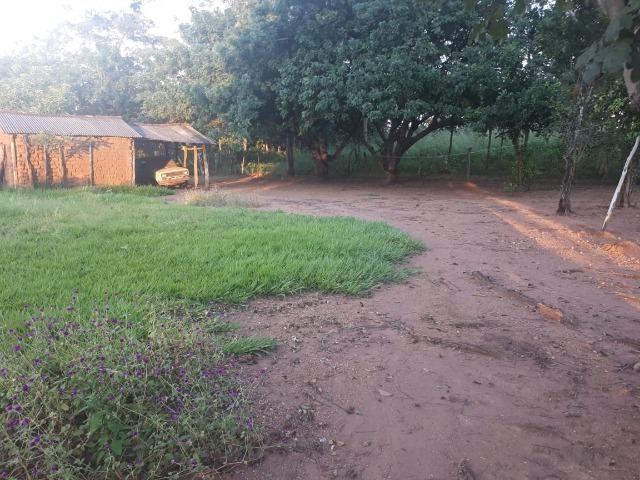 Sitio próximo do manso - Foto 17