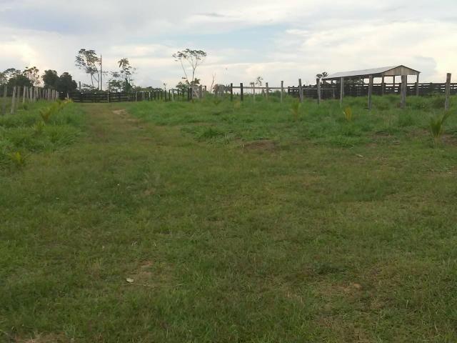 Vendesse um colônia estrada de porto acre ramal pira pora 28 km de ramal - Foto 2